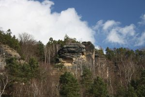 Sunny day in Saxon Switzerland by Criosdan
