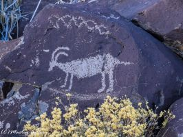 Nevada Petroglyphs150118-16 by MartinGollery