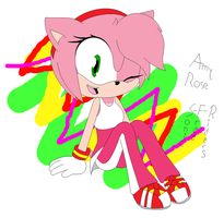 Sonic Free Riders - Amy by CariNaviTheDog-Wolf