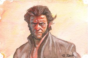 Wolverine Sketch 2... by ssava
