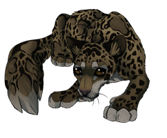 Leopard by MapleSpyder