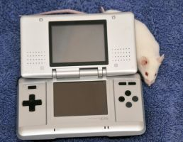 Nintendo Mouse II by LDFranklin