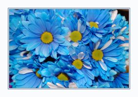 for dear Erene by ForgivenDreamSoul