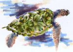 Sea Turtle by Ryerd