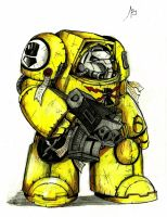 Terminator of Imperial fists. by Sufferst