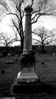Forest-hill-cemetery-11108 15122809152 O by FANARIS