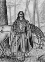 Aragorn and a horse by Theophilia