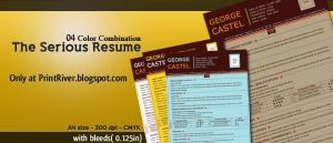 The Serious Resume by kh2838