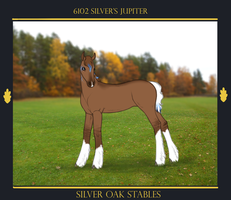 6102 Silver's Jupiter by SilveringOak