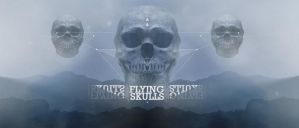 Flying skulls by jego0320