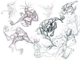 Venom Sketches 2 by spundman