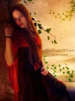 The Magic Of Love by DigitalDreams-Art