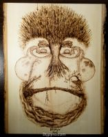Face of Nature - wood burning by brandojones