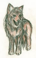 Mexican Wolf Sketch by Chibi-chan88