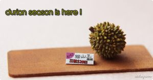 Miniature durian by Aiclay