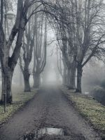 Dark Path 2 by FrantisekSpurny