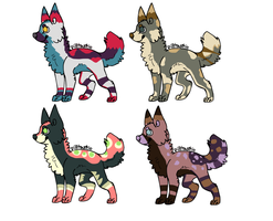 Canine Adopts by ForgedRains