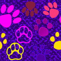 Paws by allison731