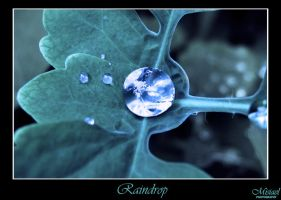 Raindrop by Misiael