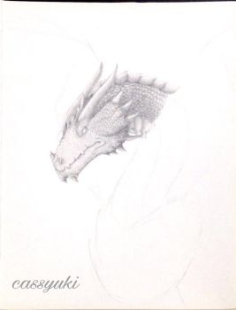 Flying Dragon (WIP #2) by cassyuki