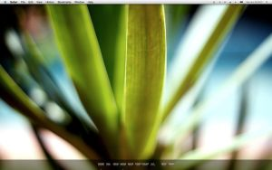June09 Desktop by thirteen-eightyone