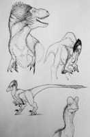 The theropods of the jurassic park trilogy  by artisticallyautistic