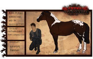 Proteus Wolfe | Equestian Co-Owner| ALIVE. by ShiaWolfe