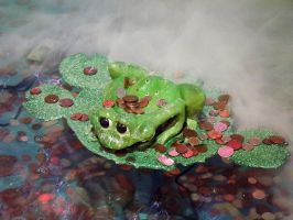 Misty frog by captainflynn