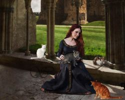 The Medieval Cat Lady by Sophia-Christina
