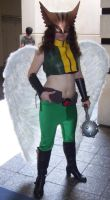 Hawkgirl by Thekidisacat
