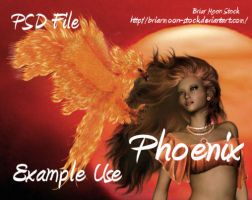 Phoenix PSD by briarmoon-stock