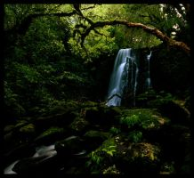 Matai Falls, South NZ by Thrill-Seeker