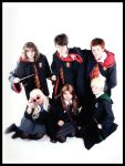 Harry Potter: TEAM HOGWARTS by CCPCosplayGallery