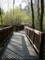Wood Bridge Park Background by Enchantedgal-Stock