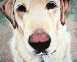 Labrador Acrylic Painting Of Maggie by TheCreativeChameleon