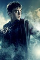 HP Harry by LifeEndsNow