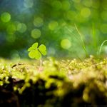 A Little Hope by MarcoHeisler