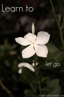 Learn to let go. by blubooelle
