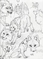Aleya sketches by Suenta-DeathGod