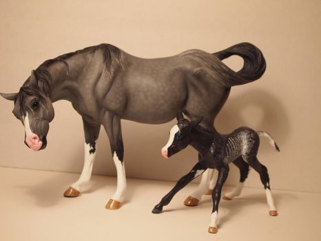 Custom Breyer Susecion and LeFire set (SOLD) by theblackarabianlover