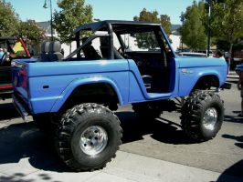 Tall Ford Bronco by RoadTripDog