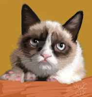 Grumpy Cat by Dolaria