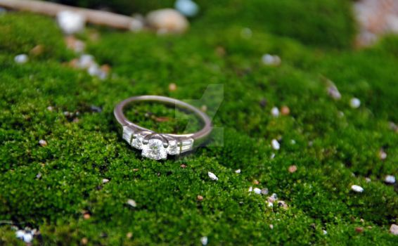 Mossy Ring by tinkerbell81284