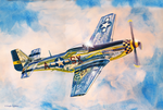 Airshow Mustang by DouglasCastleman