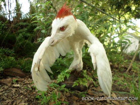 Albino Microraptor by Book-Rat