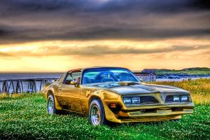 78 Trans Am - 400 Sm Block HDR by Witch-Dr-Tim