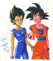 Goku and Vegeta are girls by lilcyborg