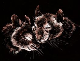 Degu Love by MoonsongWolf