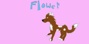 Flower Character Sheet by Wolvesreign23