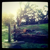 Port Arthur by catemate